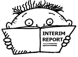 interim report